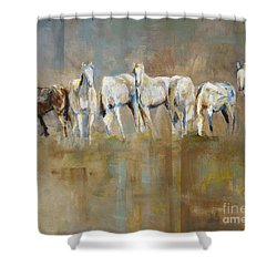 The Horizon Line Shower Curtain by Frances Marino
