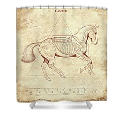 The Horse's Canter Revealed Shower Curtain by Catherine Twomey