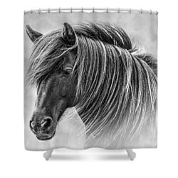 The Horses Of Iceland Shower Curtain