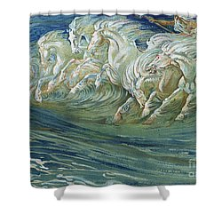 The Horses Of Neptune Shower Curtain by Walter Crane