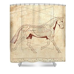 The Horse's Trot Revealed Shower Curtain by Catherine Twomey