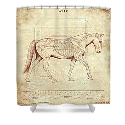 The Horse's Walk Revealed Shower Curtain by Catherine Twomey