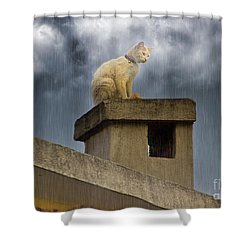 The Hunt Goes On Shower Curtain