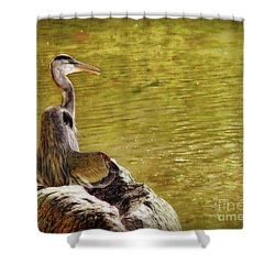 Shower Curtain featuring the photograph The Hunter by Sue Melvin