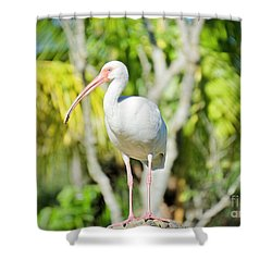 The Ibis Pose Shower Curtain