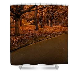 The Innocent Railway Path Shower Curtain