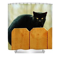The Instigator Shower Curtain