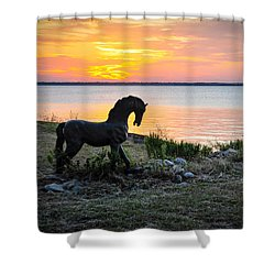 The Iron Horse Shower Curtain