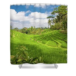 The Island Of God #14 Shower Curtain