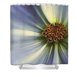The Jewel Shower Curtain by Elfriede Fulda