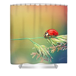 The Journey Ahead Shower Curtain