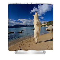 The Joy Of Being Well Loved Shower Curtain by Sean Sarsfield