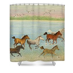 The Joy Of Freedom Shower Curtain by Pat Scott