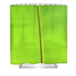 The Jungle Illuminated Shower Curtain