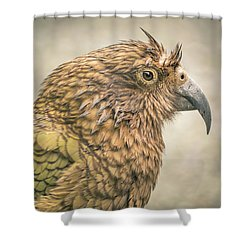 The Kea Shower Curtain by Racheal Christian