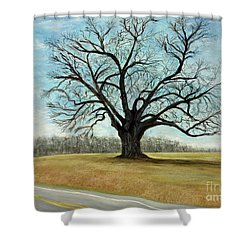 The Keeler Oak Shower Curtain by Lyric Lucas