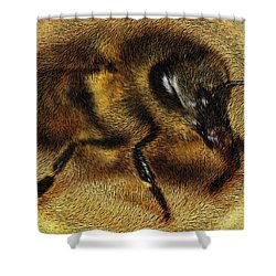The Killer Bee Shower Curtain by ISAW Gallery