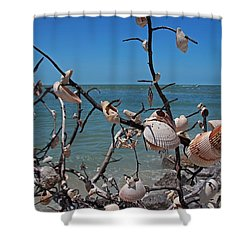 Shower Curtain featuring the photograph The Kindness by Michiale Schneider