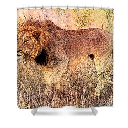 The King Shower Curtain by Ericamaxine Price