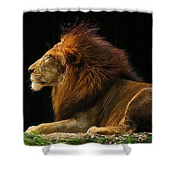 The King Shower Curtain