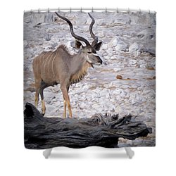 Shower Curtain featuring the digital art The Kudu In Namibia by Ernie Echols