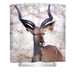 The Kudu Portrait 2 Shower Curtain by Ernie Echols