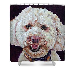 The Labradoodle Shower Curtain by Enzie Shahmiri