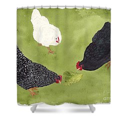 The Ladies Love Salad Three Hens With Lettuce Shower Curtain