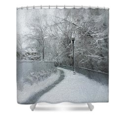 The Lamppost Shower Curtain