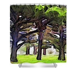 The Landscape With The Leaning Trees Shower Curtain