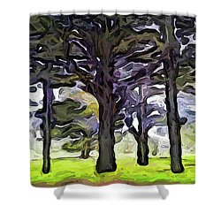 The Landscape With The Trees In A Row Shower Curtain