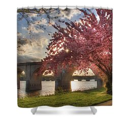 The Last Glimmer Shower Curtain