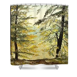 Shower Curtain featuring the painting The Last Hill by Sorin Apostolescu