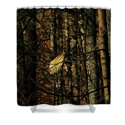 The Last Leaf Shower Curtain by Bruce Patrick Smith
