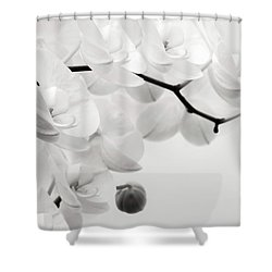 The Last Orchid Shower Curtain
