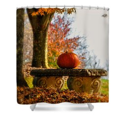 The Last Pumpkin Shower Curtain by Lois Bryan
