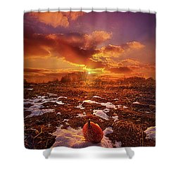 Shower Curtain featuring the photograph The Last Pumpkin by Phil Koch