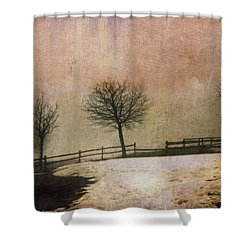 The Last Snow Shower Curtain