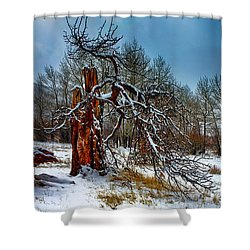 Shower Curtain featuring the photograph The Last Stand by Shane Bechler