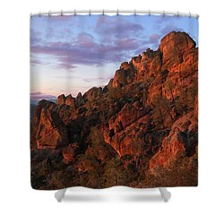 The Late Show Shower Curtain