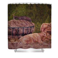 The Lazy 5 Shower Curtain