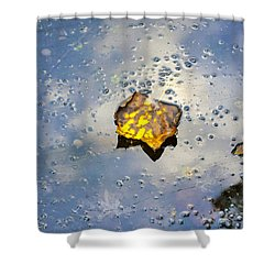 The Leaf And Liquid Sky Shower Curtain