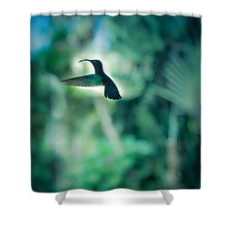 The Levitation Shower Curtain