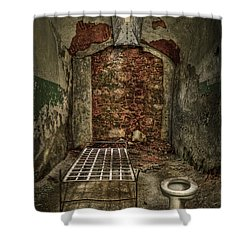 The Life Of Crime Shower Curtain by Evelina Kremsdorf