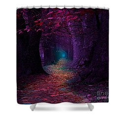 The Light At The End Shower Curtain by Rod Jellison