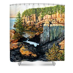 The Light Dawns On West Quoddy Head Shower Curtain