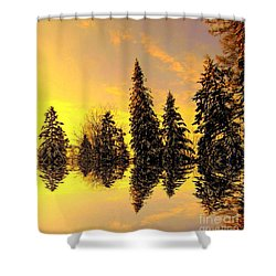 The Light Shower Curtain by Elfriede Fulda