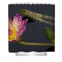 The Light From Within Shower Curtain