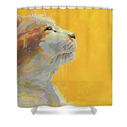 The Light Shower Curtain by Kimberly Santini