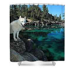 The Light Of Lake Tahoe Shower Curtain